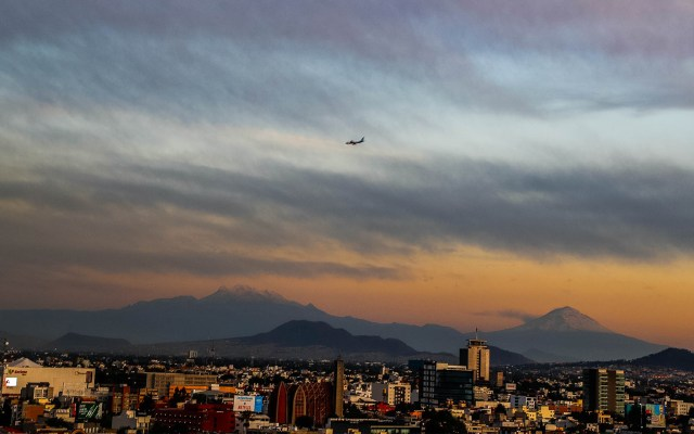 Fuertes vientos provocan caída de árboles y ramas en la Ciudad de México - Vientos Ciudad de México