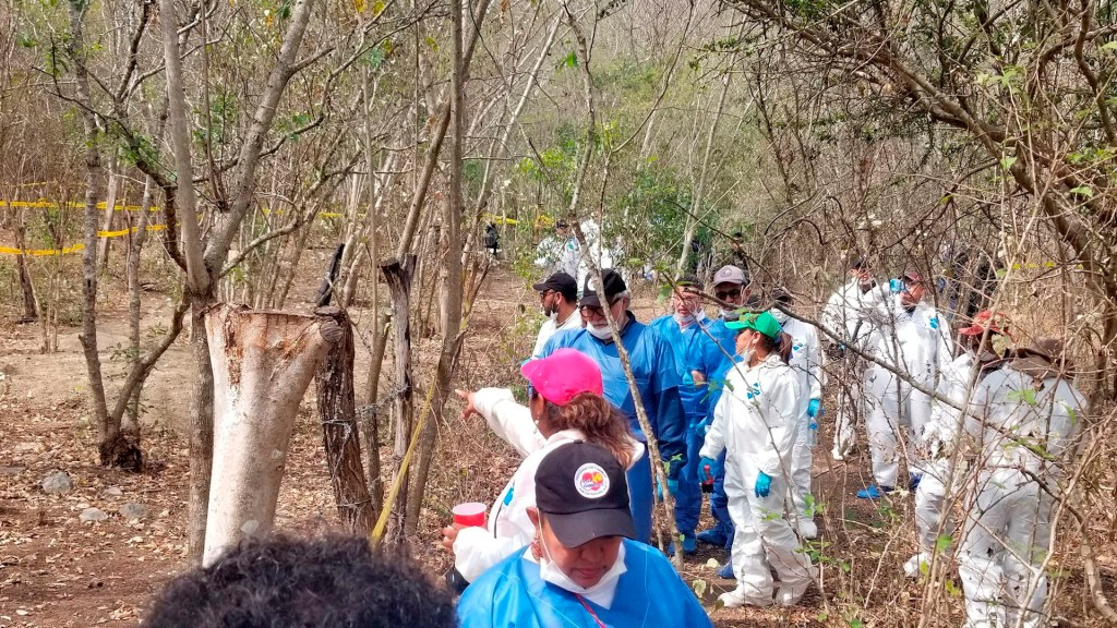 Hallan terrenos utilizados para desaparecer cadáveres en Nayarit - Hallan terrenos en Nayarit utilizados para desaparecer cadáveres