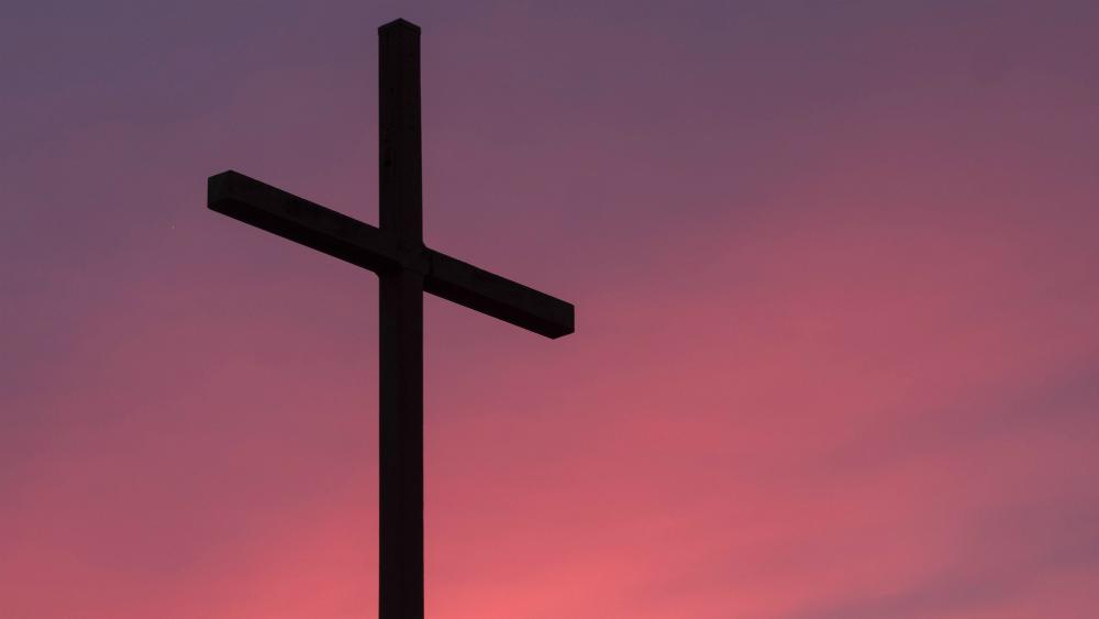 Cinco diócesis han suspendido misas por COVID-19: CEM - Foto de Aaron Burden para Unsplash