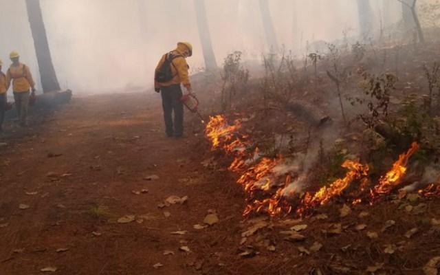 Registran 37 incendios forestales activos en 10 estados - Foto de @SEMARNAT_mx