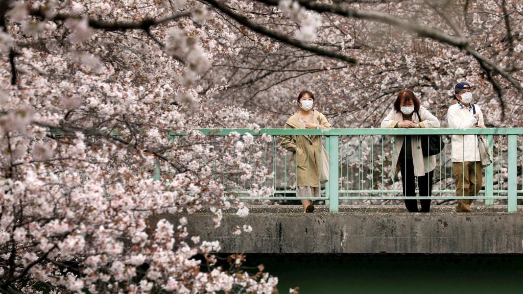 Japón analiza pagar a viajeros para alentar el turismo interno - Japón COVID-19 coronavirus