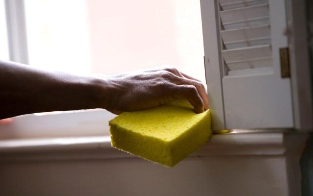Científicos alemanes, a un paso de degradar plástico de poliuretano - Las esponjas de limpieza están hechas de poliuretano. Foto de CDC / Unsplash