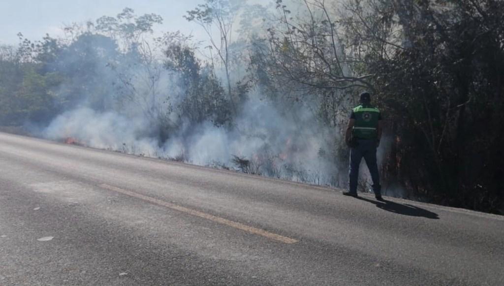 Incendios forestales provocan humo y olor a quemado en Cancún - Foto de Protección Civil Cancún
