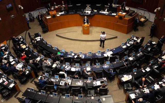 Senado aprueba Ley de Amnistía ante pandemia de COVID-19 - Foto de Notimex
