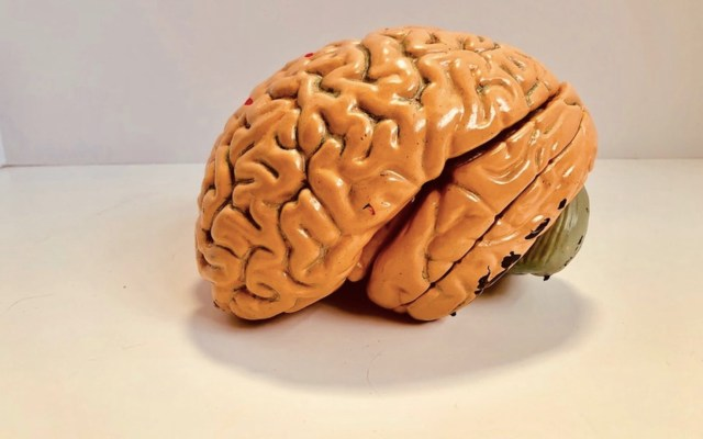 Contaminación provoca alteraciones cerebrales en zonas afectadas por alzheimer - Foto de Natasha Connell @natcon773
