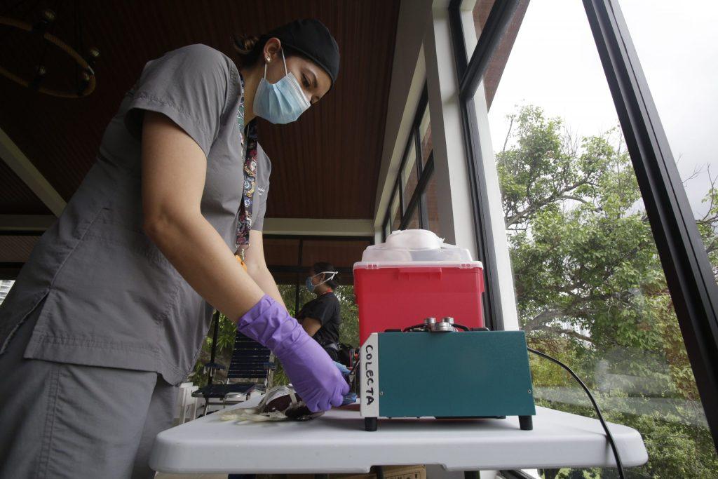 Aun en tiempos de COVID-19 se puede donar sangre, asegura López-Gatell - Foto de EFE