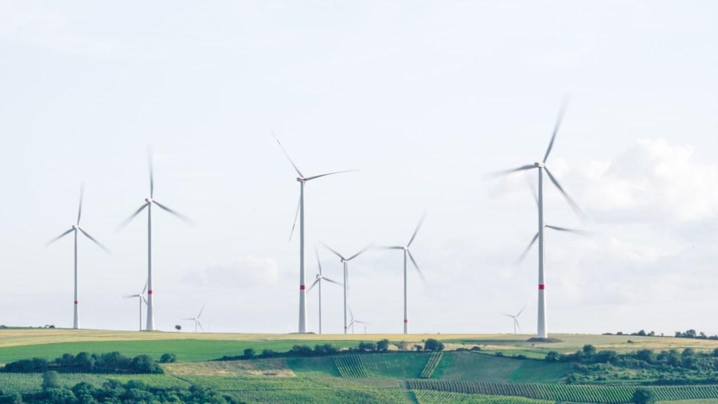 Gobierno de Tamaulipas obtiene suspensión contra nueva política eléctrica - Energía eólica. Foto de  Karsten Würth / Unsplash