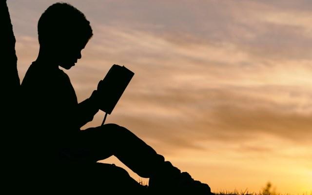 Google presenta aplicación para incentivar la lectura entre los niños - Lectura niños menor