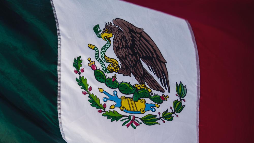 Fueron repatriados 189 mexicanos desde San Diego y Texas - Foto de Tim Mossholder para Unsplash