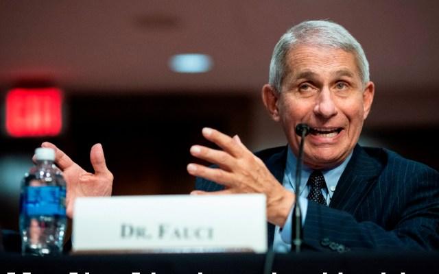 EE.UU. puede pasar de 40 mil a 100 mil casos al día de COVID-19, advierte Fauci - Foto de EFE