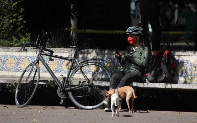 Epidemia de COVID-19 está en su máximo nivel de intensidad: López-Gatell - Foto de Notimex