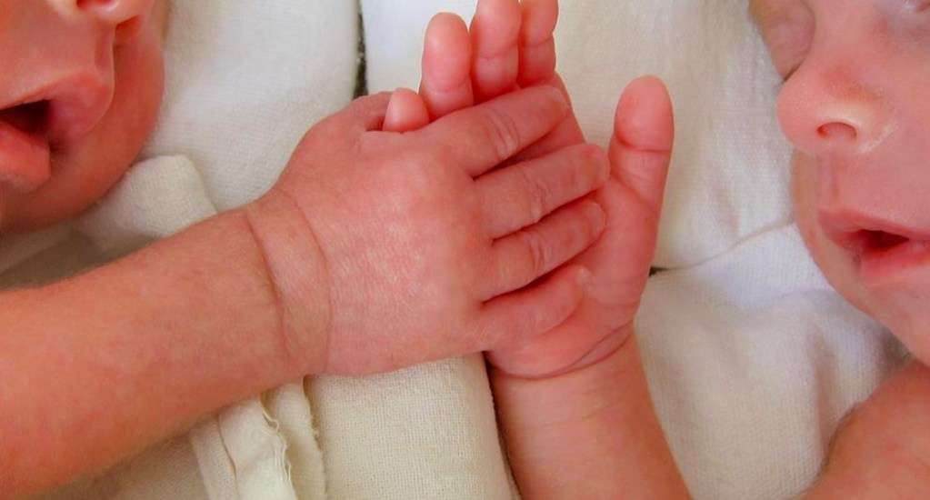 Abandonan a recién nacidos en Saltillo; uno murió - Bebés gemelos