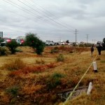 Encuentran descuartizada a familia de Aguascalientes en Zacatecas