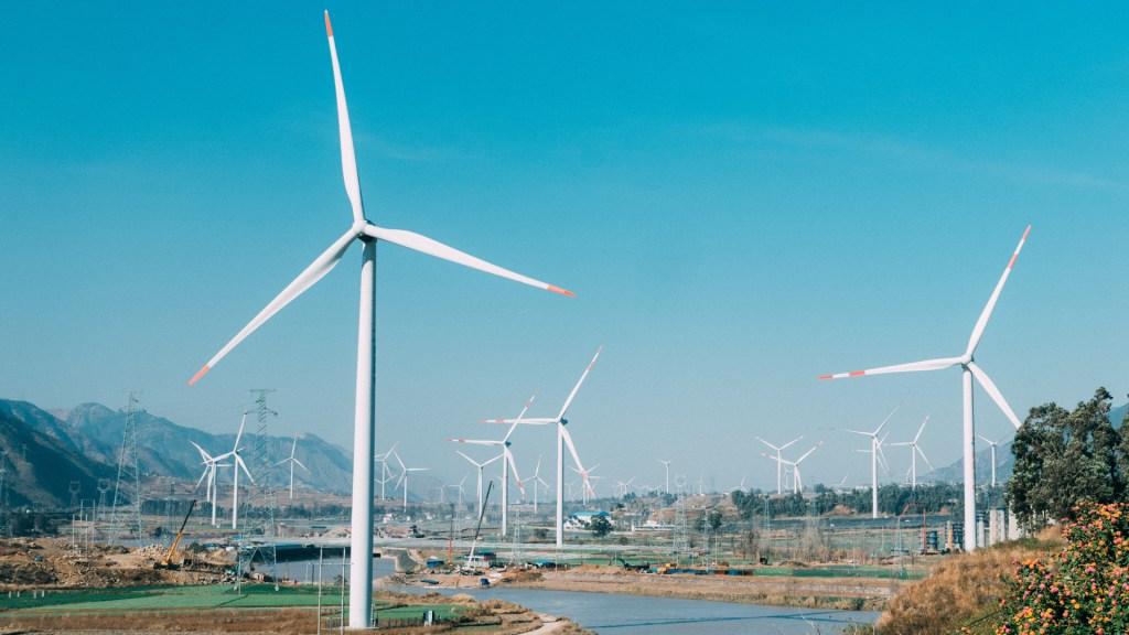 Habrá denuncias contra empresas por 'contratos fraudulentos' en sector eléctrico: AMLO - Energía eólica. Foto de  Jerry Zhang / Unsplash