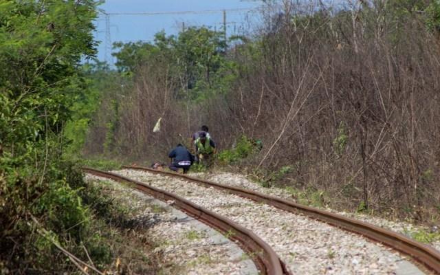 Comunidad ch'ol logra suspensión de construcción del tramo 1 del Tren Maya - Foto de @indignacion_dh