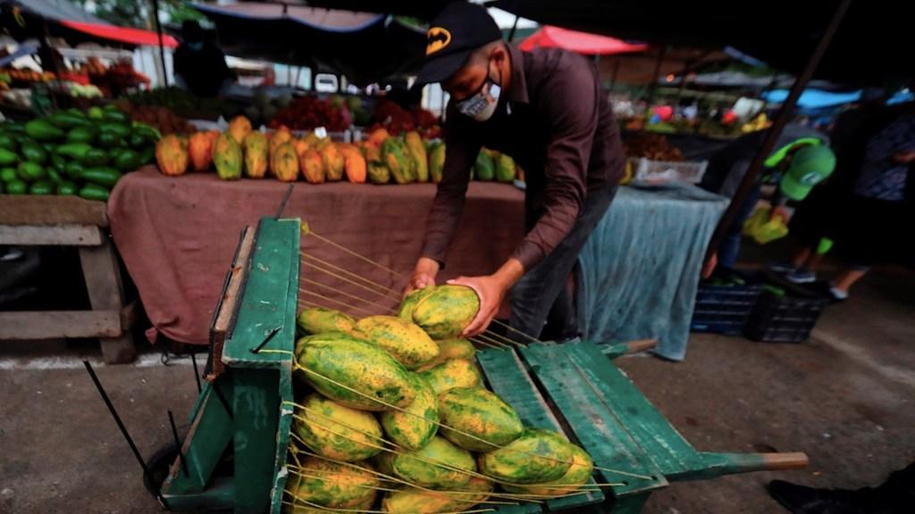 La pandemia de COVID-19 empeorará la calidad de la alimentación mundial, revelan FAO y OCDE - Foto de EFE