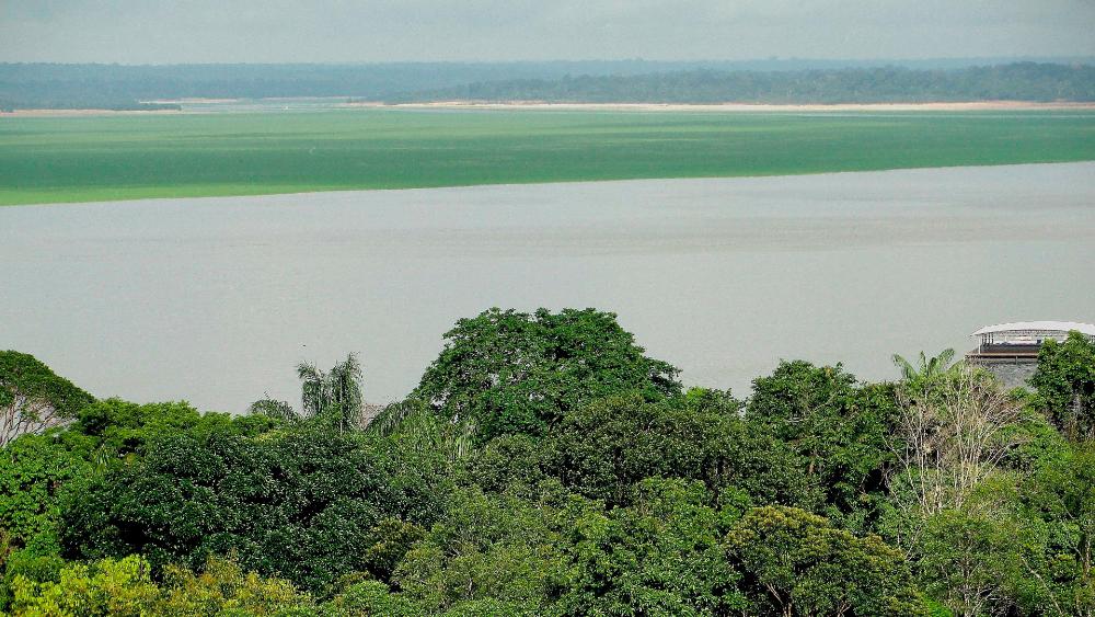 ONU alerta de avance del COVID-19 en la Amazonia de Perú, Colombia y Brasil - Panorámica de la Amazonía tomada en la ciudad de Manaos, Brasil. Foto de EFE