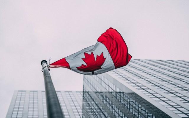 Economía de Canadá creció un 4.5% en mayo tras dos meses de fuerte caída - Foto de Lewis Parsons para Unsplash