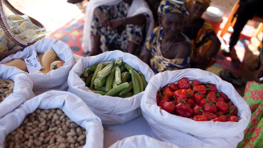 Pandemia amenaza con provocar hambre a más de 80 millones de personas - Foto de FAO for the United Nations