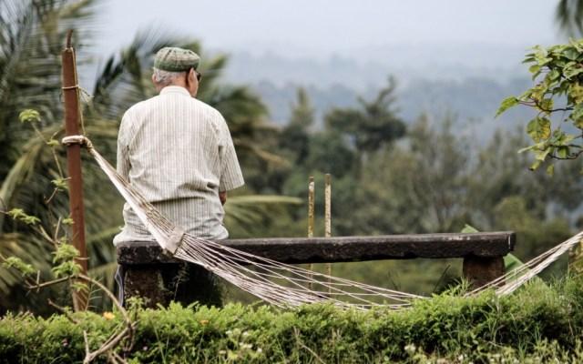 El compromiso social de XXI Banorte destaca de todas las Afores - Parque naturaleza bosque