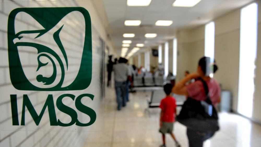CNDH solicita medidas cautelares al IMSS por interrumpir quimioterapias de una paciente con cáncer en Jalisco - En la foto, el logo del IMSS. Foto de Facebook