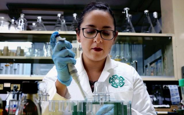 Piden científicos internacionales a legisladores de México mantener fideicomisos de Ciencia - Estudiante de doctorado del Departamento de Infectómica y Patogénesis Molecular del Cinvestav. Foto de @Cinvestav1