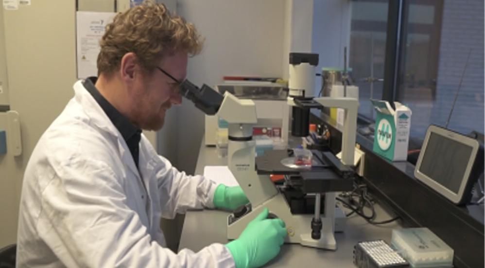 Vacuna contra el Covid-19 de Johnson & Johnson produce fuerte respuesta inmune