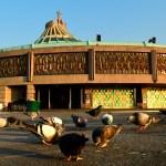 Basílica de Guadalupe sí abrirá sus puertas a los fieles este 11 y 12 de diciembre