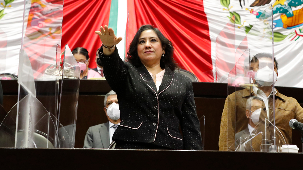 Sin cargas políticas, debido proceso se ha respetado en procesos administrativos a funcionarios: Irma Eréndira Sandoval - Foto de Cámara de Diputados