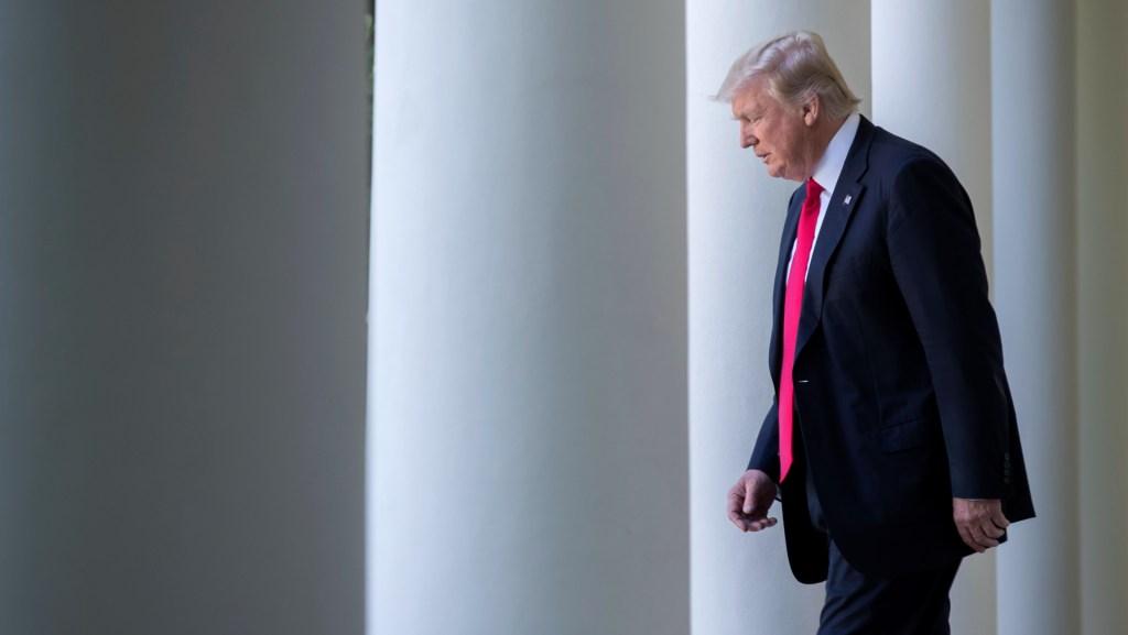 A golpe de realidad y reveses judiciales, Trump comienza a asumir la derrota - Foto de EFE