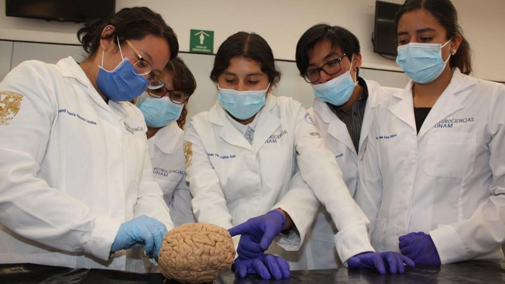 Universidades en CDMX reanudan actividades relacionadas a Ciencias de la Salud - Alumnos de la Facultad de Medicina de la UNAM. Foto de @FacultadMedicinaUNAM