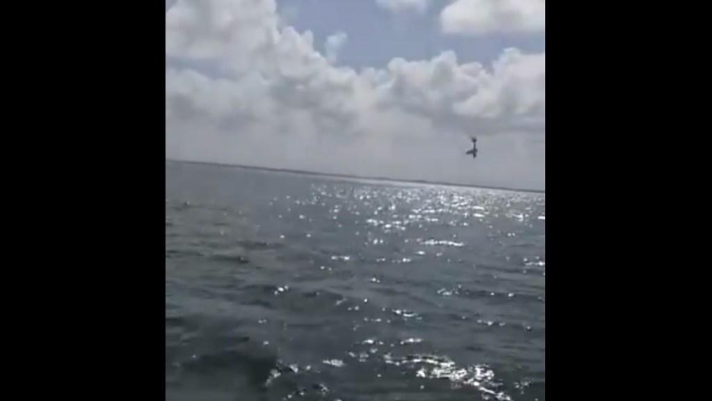 #Video Al menos dos muertos por desplome de avioneta en Zona Hotelera de Cancún - Avioneta cancún quintana Roo