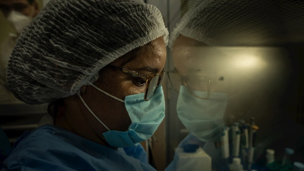 Brasil rebasa las 390 mil muertes por COVID-19; abril el mes con más defunciones - Brasil COVID-19 coronavirus pandemia epidemia extranjero