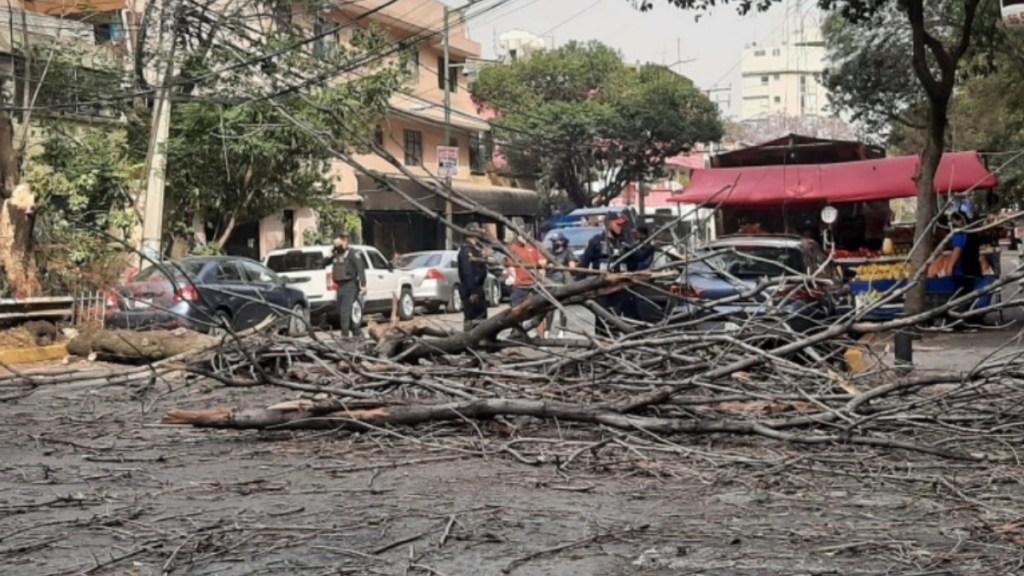 Reportan caída de árboles y cables tras fuertes vientos en el Valle de México - Ciudad de México tolvarenas contaminación daños árboles caídos