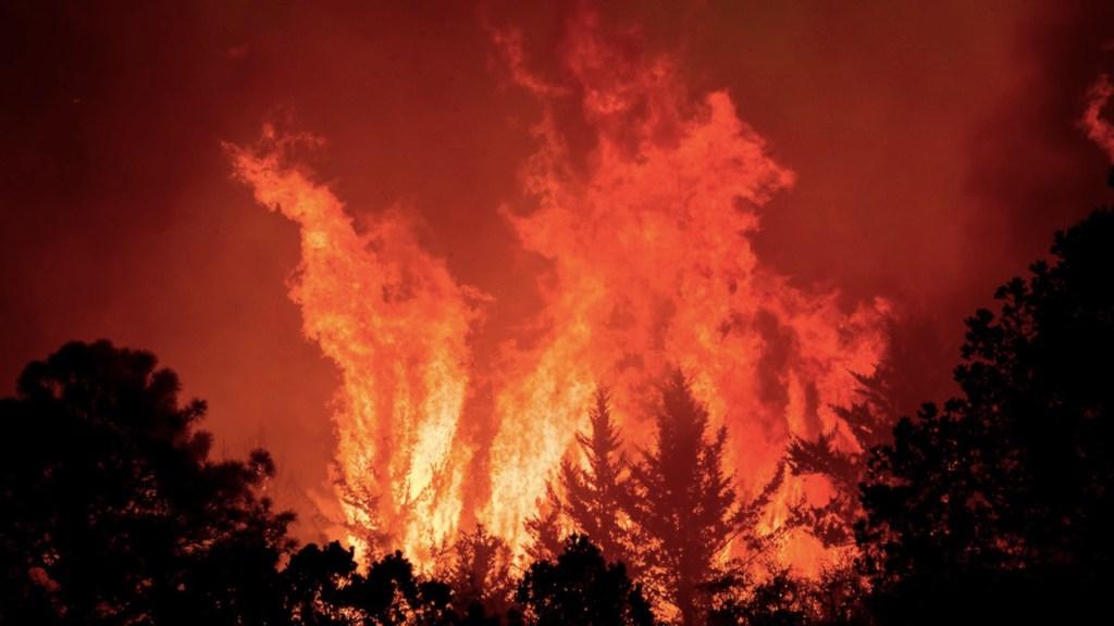 Incendio forestal en límites de Coahuila y Nuevo León obliga a desalojar al menos a 400 personas - Foto de EFE