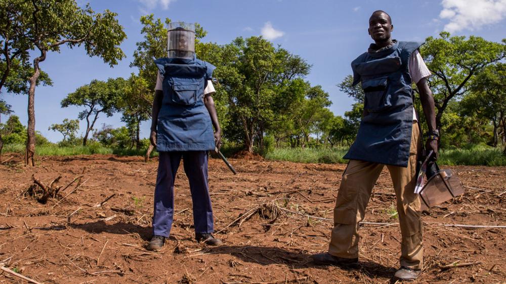 equipo trabajo minas terrestres antipersonal