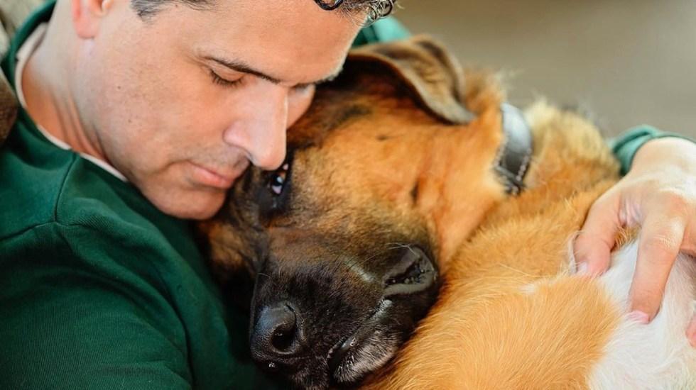 Murió 'Bernie', perro de Marco Antonio Regil - Marco Antonio Regil con su perro 'Bernie'. Foto de @marcoantonioregil