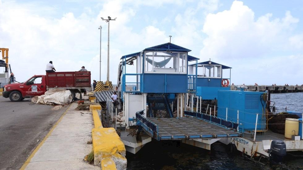 Buque recoge sargazo en altamar para que no llegue a costas de Quintana Roo - Sargazo Quintana Roo buque altamar costa