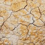 México, en alerta severa por sequía - Foto: Especial
