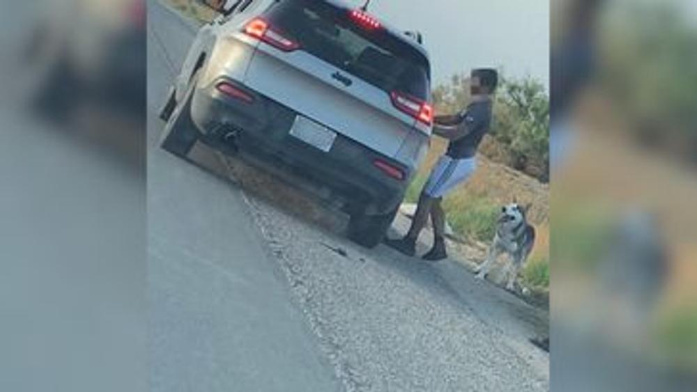 Texas: Arrestan a hombre tras abandonar a su perro en la carretera - Abandono perro El Paso Texas EEUU