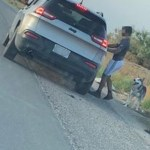Texas: Arrestan a hombre tras abandonar a su perro en la carretera