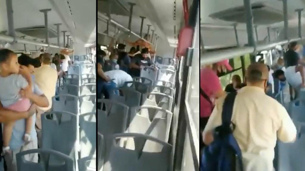 #Video Serpiente a bordo de camión en Escobedo desata pánico - Escobedo Nuevo León camión transporte