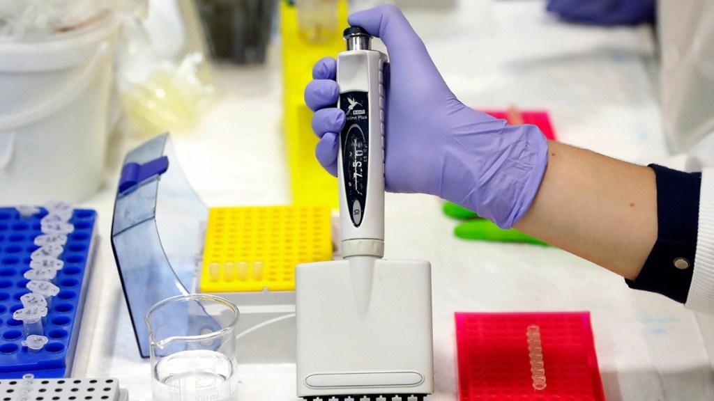 Expertos mejoran su capacitación sobre innovaciones en cáncer - muestras de laboratorio cáncer
