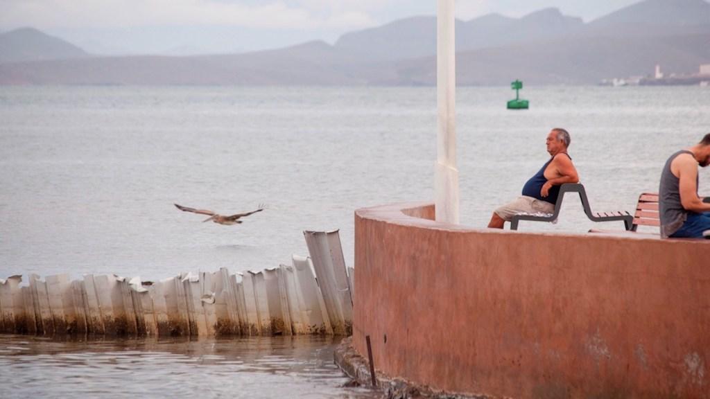 Tormenta tropical Marty se aleja de costas mexicanas - Tormenta tropical Marty se aleja de costas mexicanas. Foto de EFE