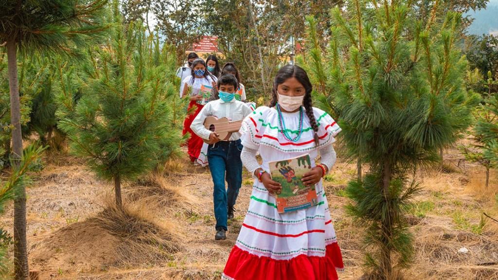 Conafe refuerza servicios educativos para menores en zonas marginadas - Estudiantes en zonas marginadas de México