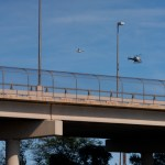Reabren paso fronterizo en Del Río, Texas, tras retiro de campamento migrante