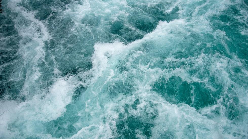 Murió turista en río de Hidalgo al intentar salvar a su hijo - río agua