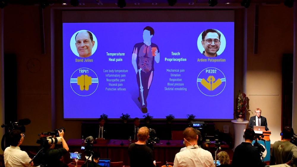 Nobel de Medicina para Julius y Patapoutian por hallazgos sobre el tacto - Premio Nobel Medicina 2021