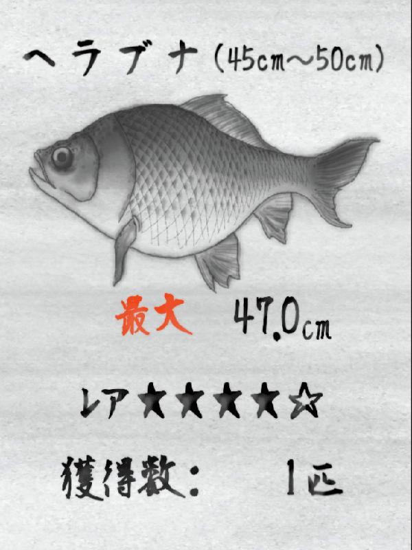 魚拓コレクション画像
