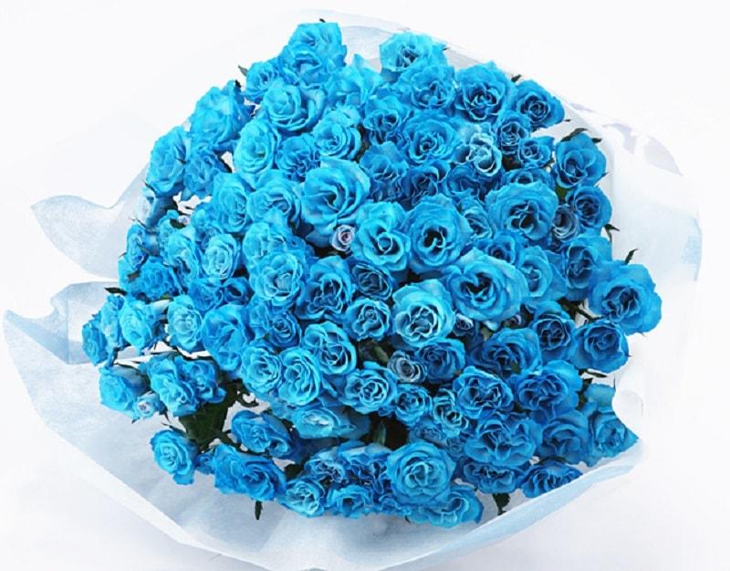 青バラ画像